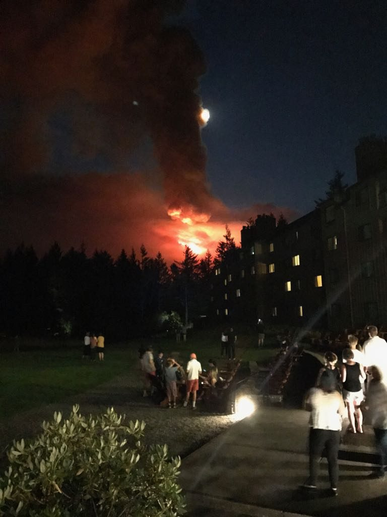 Amerika'da büyük orman yangını